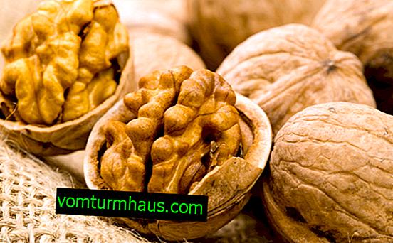 Výhody a poškození ořechů a kolik mohou být konzumovány denně