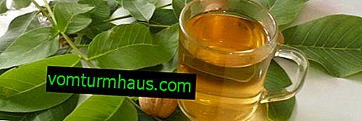 Los beneficios y daños del té de las hojas de nuez