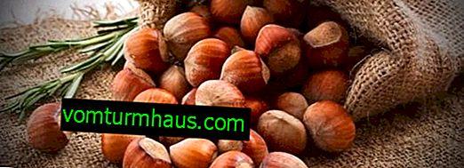 Jämförelse av hasselnötter och hasselnötter