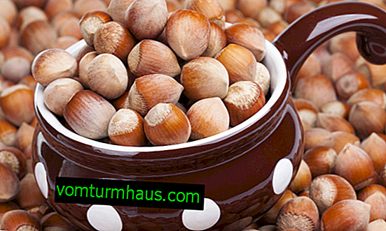 Hazelnuts for men: the benefits and harms of nuts