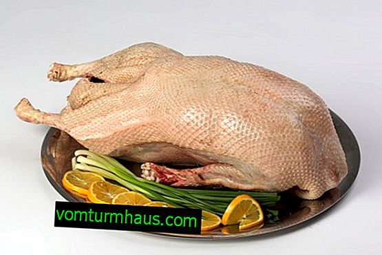 Gås kött: fördelar och skador