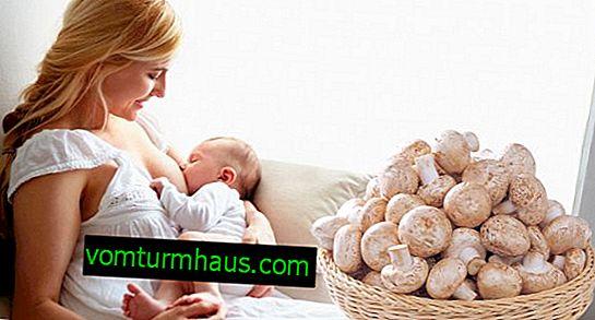 Pieczarki białe podczas karmienia piersią: czy to możliwe, czy nie