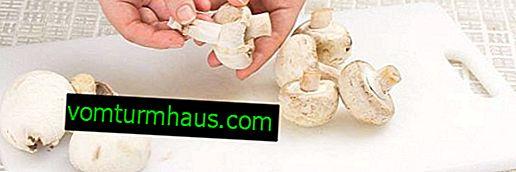 Champignons: funktioner i rengøring, forarbejdning og opbevaring