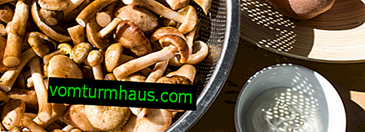 How much boil mushrooms should be cooked before frying and freezing