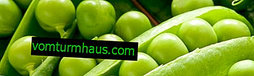 Peas: health benefits and harms