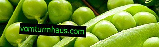 Peas: ประโยชน์ต่อสุขภาพและอันตราย