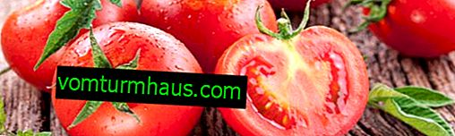 Cladosporiosis af tomater: en beskrivelse af sygdommen og metoder til bekæmpelse af kemiske og folkemæssige lægemidler