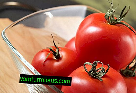 How to store tomatoes at home correctly?