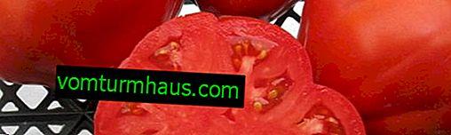"""Tomater """"Sukkerbison"""": beskrivelse, dyrkning af landbrugsteknikker"""