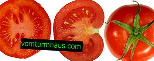 """Rajčata """"Žonglér"""": popis, zemědělské pěstování"""