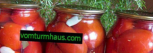 Как да запазите домати за зимата в банки: стъпка по стъпка рецепта за готвене