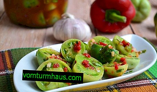 Kalla saltade gröna tomater: de bästa recepten, steg-för-steg tillagningsinstruktioner